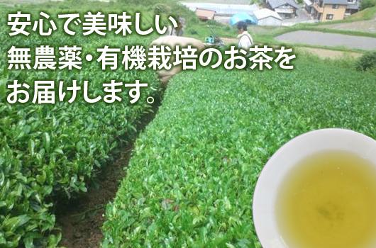 竹西農園では無農薬のお茶を作っております。