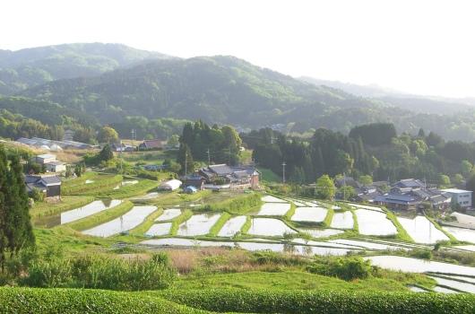 大和茶の和カフェ 遊茶庵